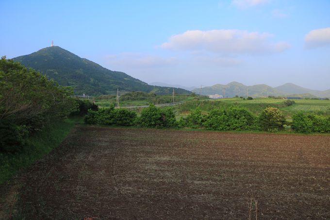 北海道で言えば美瑛!?素朴な情緒が根付く「岐宿」の風景!
