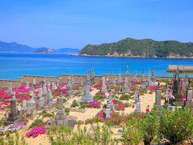 花咲き誇る墓地も!五島列島・頭ヶ島周辺の文化遺産巡りモデルコース