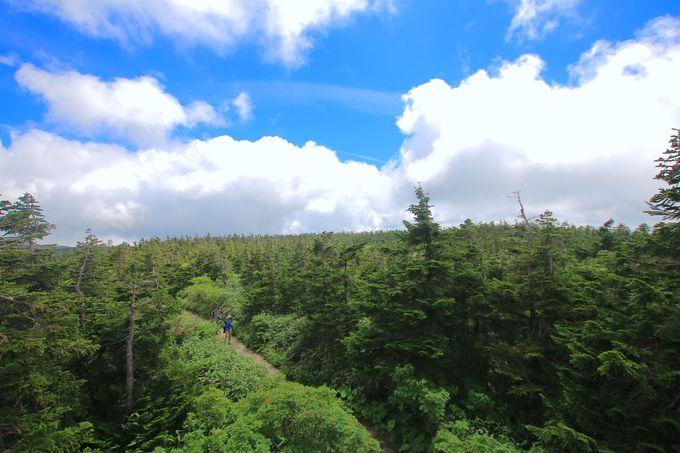 絶景のパノラマも!「見返峠」からハイキング感覚で登山開始
