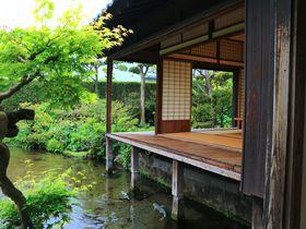 鯉泳ぐ近代庭園に癒されよう!長崎県島原市「湧水庭園 四明荘」