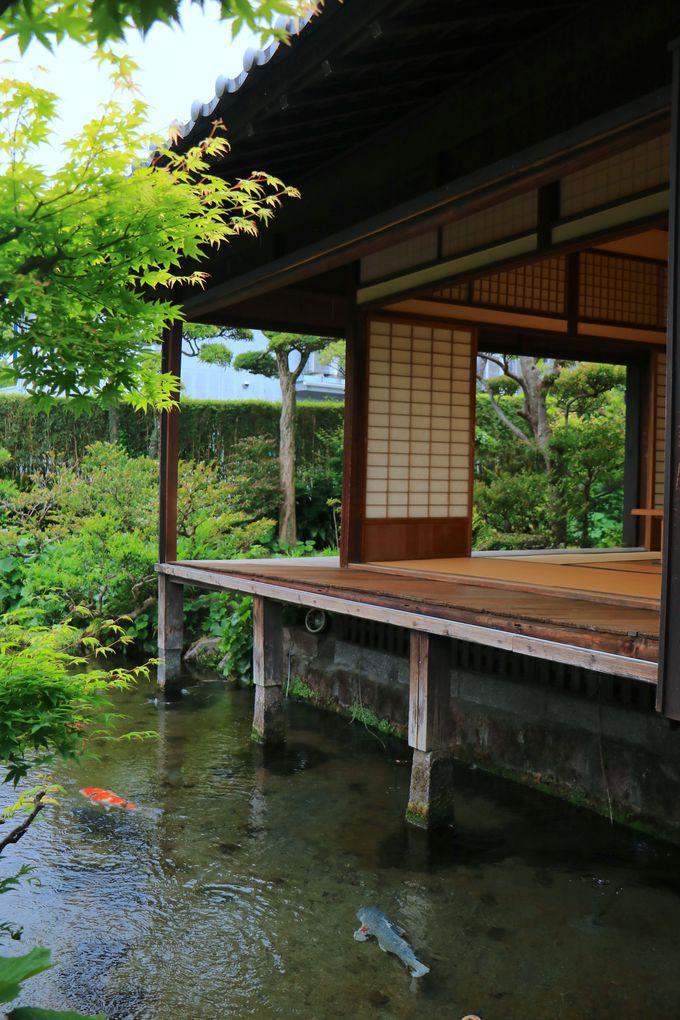 島原が誇る絶景の「湧水庭園 四明荘」