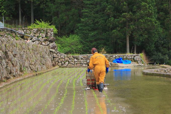 自然との共生!守り受け継がれる「日本の原風景」