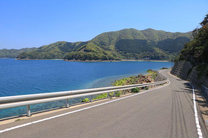五島屈指の秘境道路!ミルキーブルーの海が待つ若松島「県道169号線」