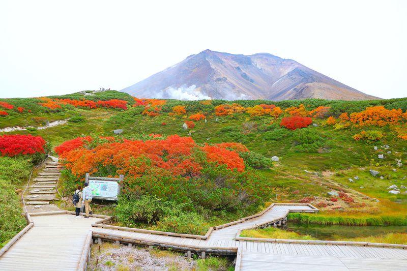 鮮烈で大スケール!北海道最高峰「旭岳」から眺める日本一早い紅葉 | 北海道 | LINEトラベルjp 旅行ガイド