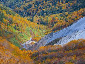 初秋が一番美しい!北アルプス「乗鞍岳」に彩る錦絵の世界