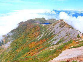 初秋の北アルプス「白馬乗鞍」が絶景!紅葉彩る天空世界