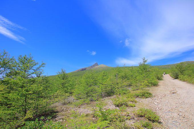 道南独特の自然景観を作り上げた「北海道駒ヶ岳」