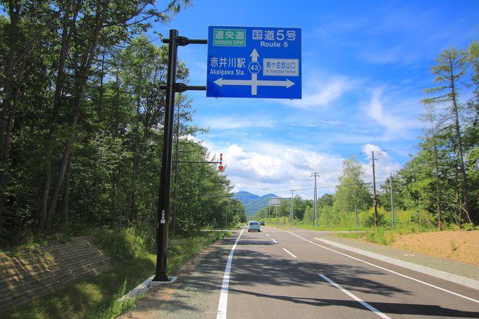 「駒ヶ岳コース」ピストン!駒ヶ岳が作り上げる生命力溢れる山麓