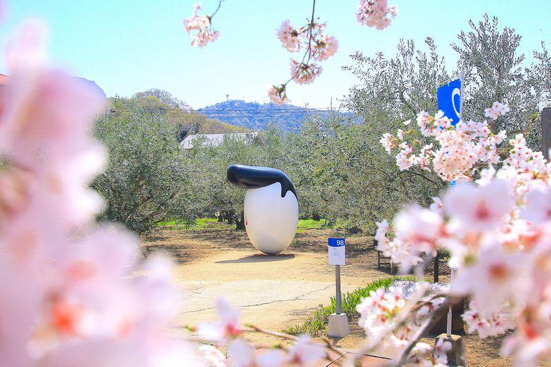香川で「#映え旅」!おすすめ観光スポット10選