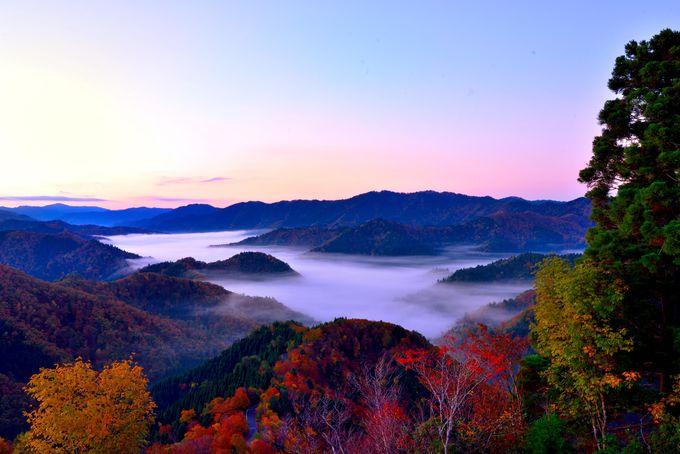 雲海と紅葉が魅せる奇跡の絶景