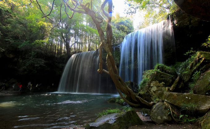 阿蘇観光に利用したい!南小国「リパパ亭」は最高のライハ