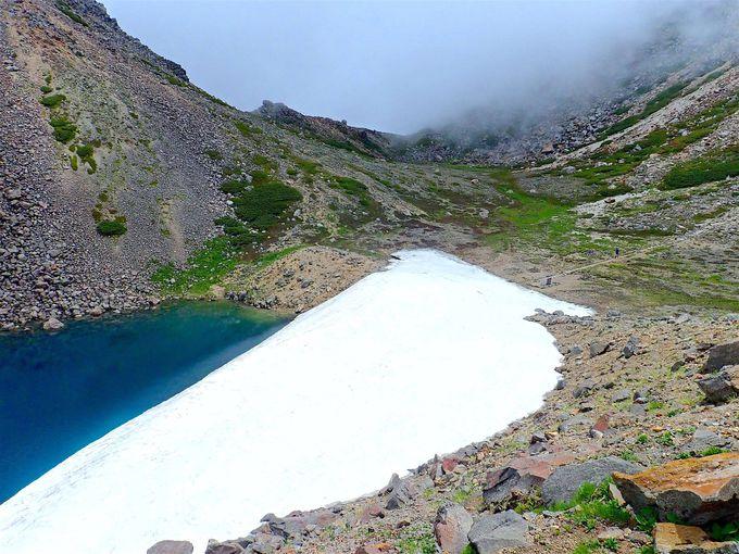 ひたすらに広がる大自然!美しき霊峰「白山」の世界