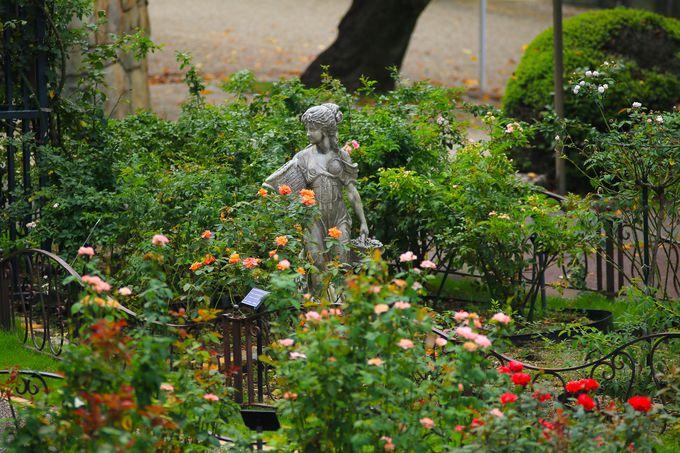 東山動植物園は魅力が絶えないレジャースポット!