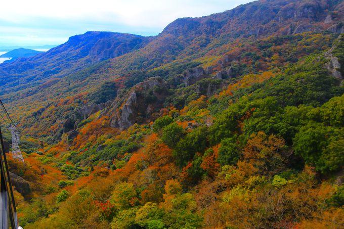 ロープウェイと展望台から望む大渓谷の紅葉