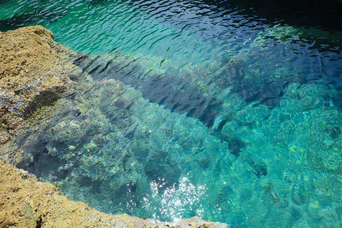 目を見張るほど美しい!仏ヶ浦の海
