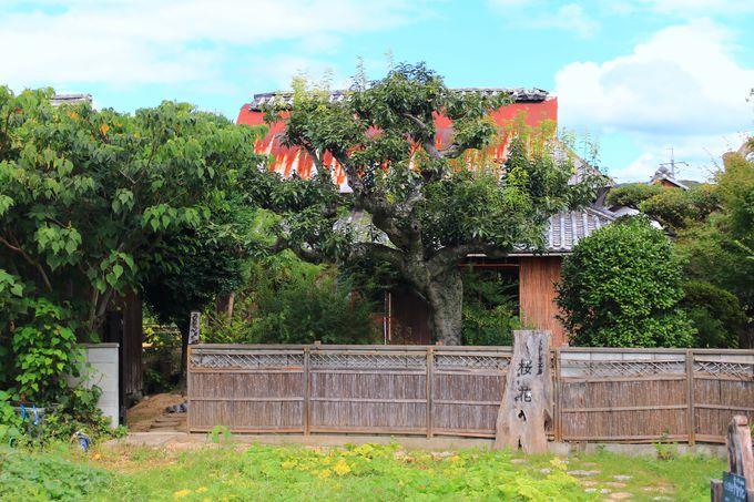 素朴な外観!倉敷酒津の住宅街に佇む一軒の古民家カフェ