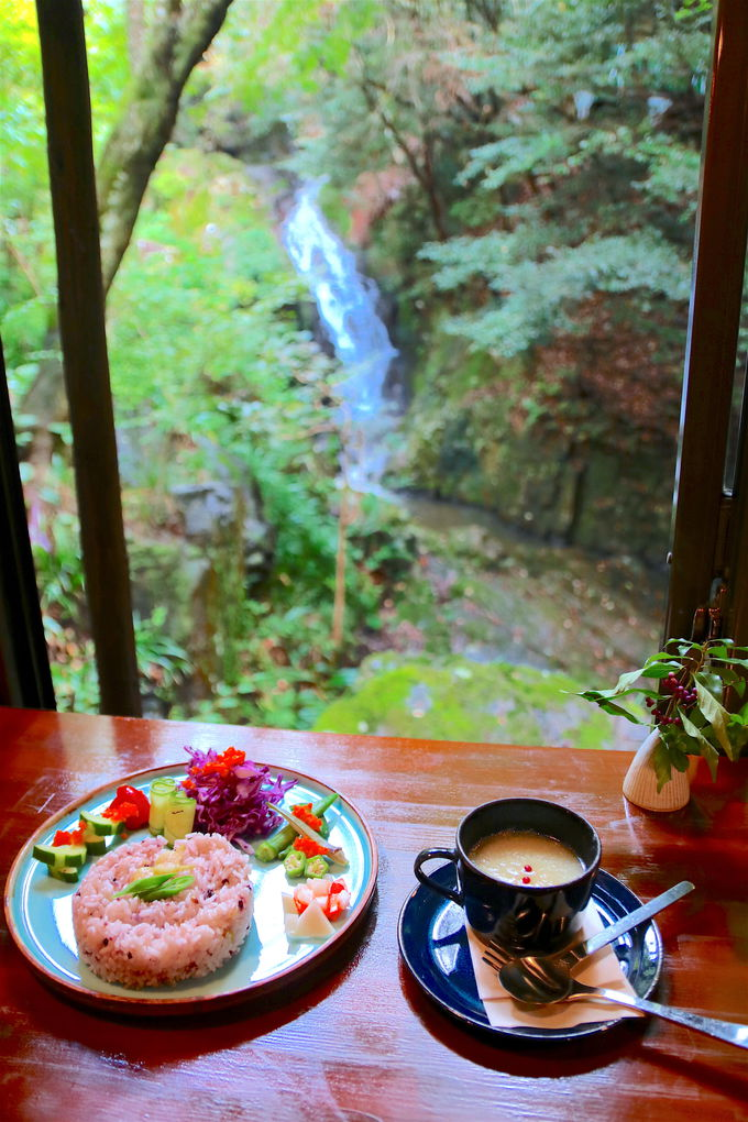 滝の音を聞き、新緑を見ながら食事を頂けるのが醍醐味!