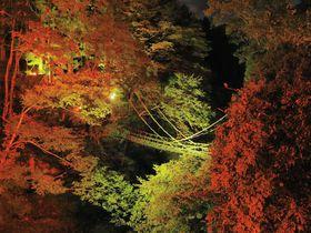 感動的な絶景の連続!徳島県「祖谷渓」周辺の紅葉ベスト5