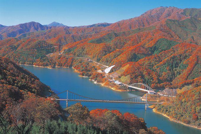個性に富んだ絶景も!「九頭竜湖」や「六呂師高原」