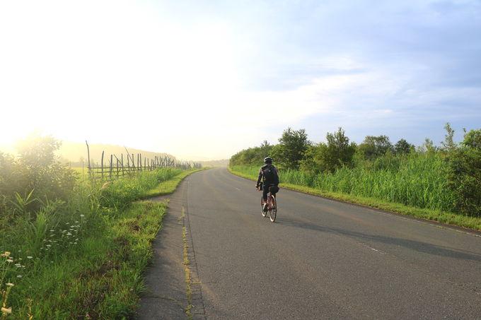 まるで北の大地!?長閑な農道を走って「尻屋崎」へ