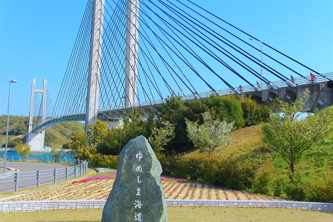 愛媛県の各自治体でも独自の観光支援策を実施(4)