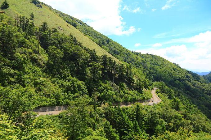この道抜きに西日本の道は語れない!絶景道「UFOライン」