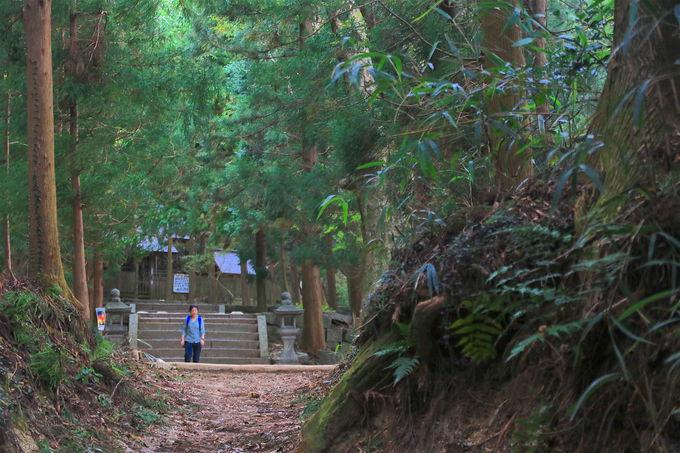 地元に愛される美しき里山!王道の「猿投山」