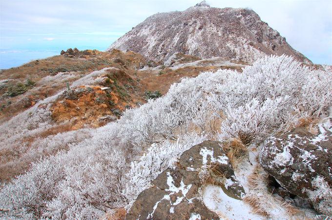 非日常の美しい世界がそこに!冬は霧氷を見に「雲仙普賢岳」へ