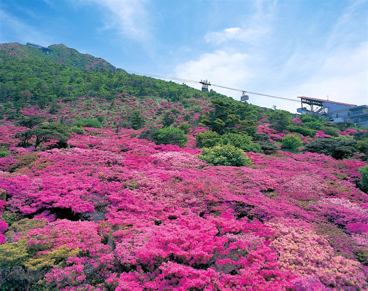 長崎県民に愛される名山「雲仙普賢岳」
