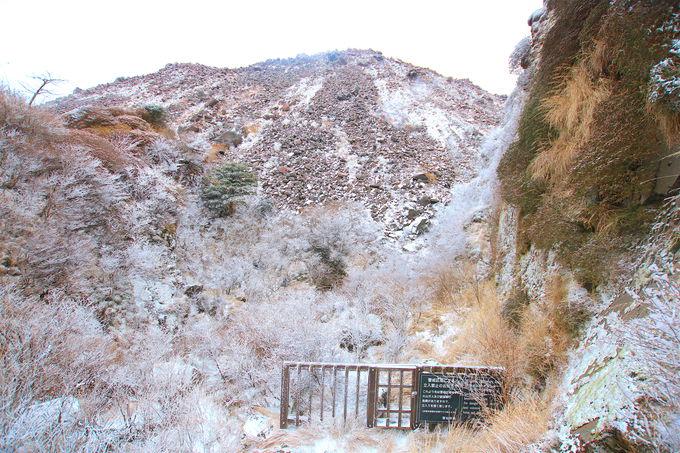 火山と霧氷のコラボが唯一無二!冬の「雲仙普賢岳」が見せる絶景