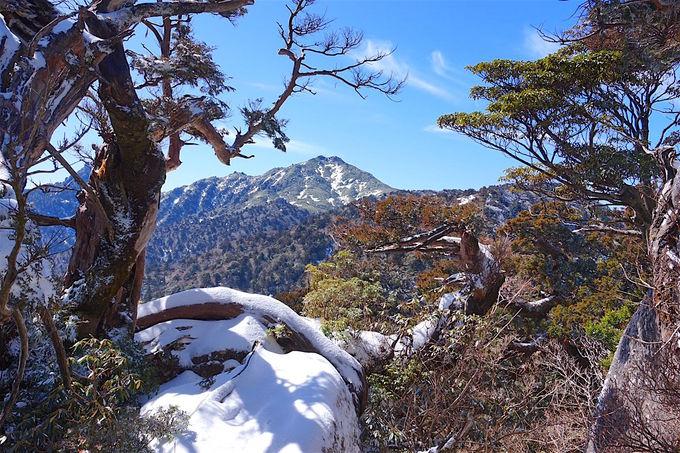九州最高峰「宮之浦岳」は神の宿る世界!