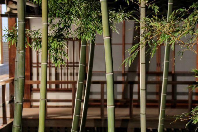 今ここでしか見られない!上京区「妙顕寺」の庭園と伝統工芸アート