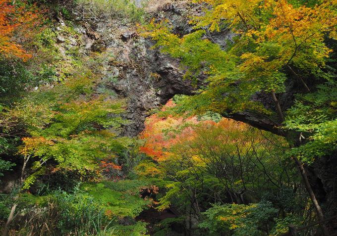 寒霞渓が作り上げた景勝地!見応え抜群の第18番札所「石門洞」