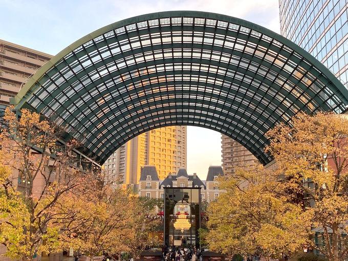 東京「恵比寿ガーデンプレイス」で優雅なイルミネーションを堪能