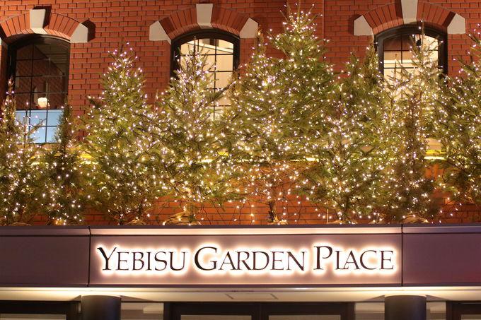 東京「恵比寿ガーデンプレイス」の旬はイルミネーション!