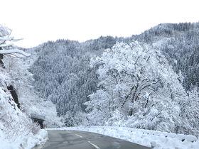 五箇山から天空の秘湯をつなぐ!富山県南砺市「山の神林道」が絶景