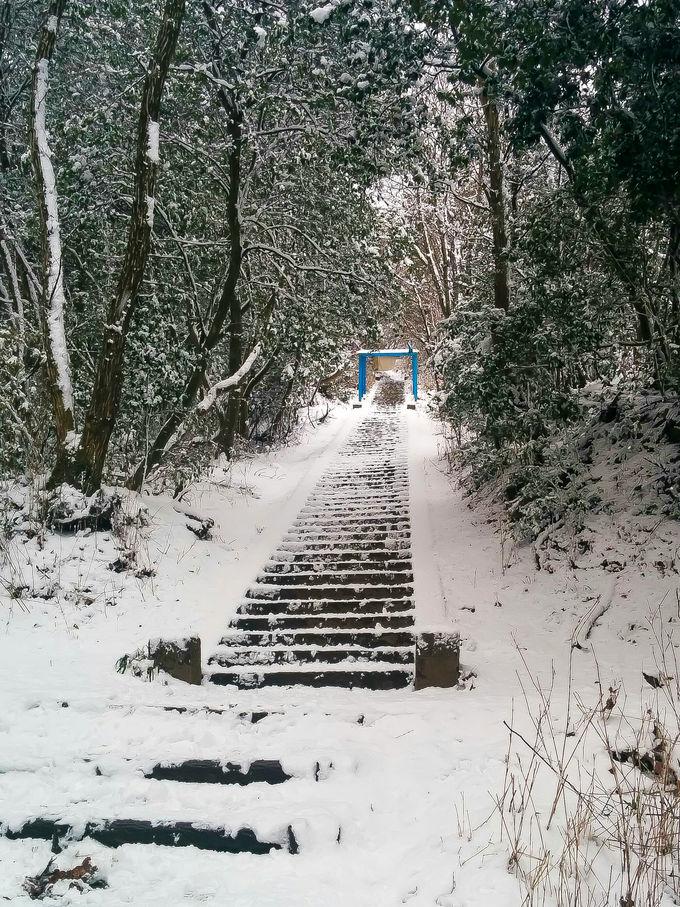 冬の大文字山が美しすぎる!小さな山が冒険の世界へ一変