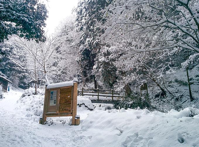 京都から雪山入門!「大文字山」から楽しむ白銀世界