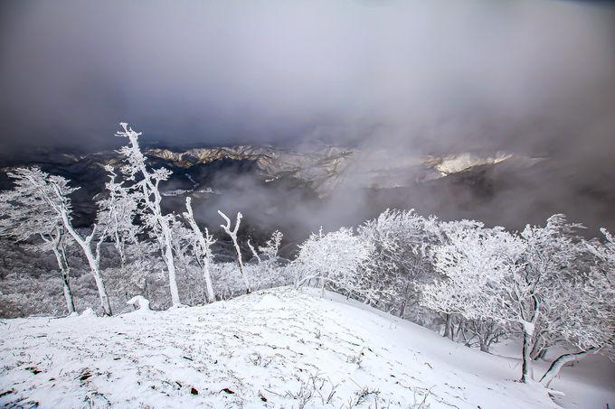 関西屈指の雪山世界へ!春だけでなく冬も楽しめる吉野の桜