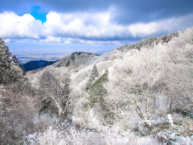 雪山入門に最適!大阪・奈良「金剛山」絶景の樹氷ハイキング