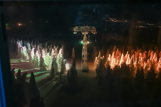 蔵王の樹氷のもう一つの楽しみ方!「樹氷ライトアップ」を見に行こう