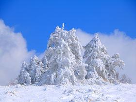 長野県でアイスモンスター!?阿智村「南沢山」冬の絶景雪山登山