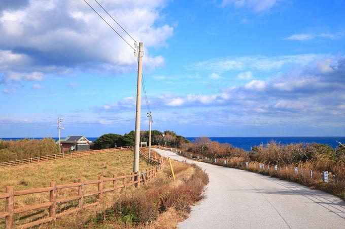 角島へ上陸!見逃せない3つの絶景スポット