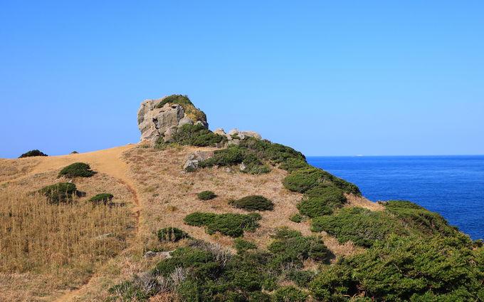 壱岐の語源!生き島の八本柱伝説・絶景の「猿岩」