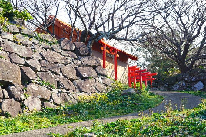 朝鮮出兵の足掛かり!対馬灘を見渡す山城「勝本城跡」