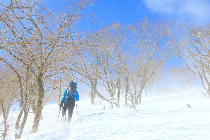 雪山の荘厳さを感じながら「藤原山荘」へ