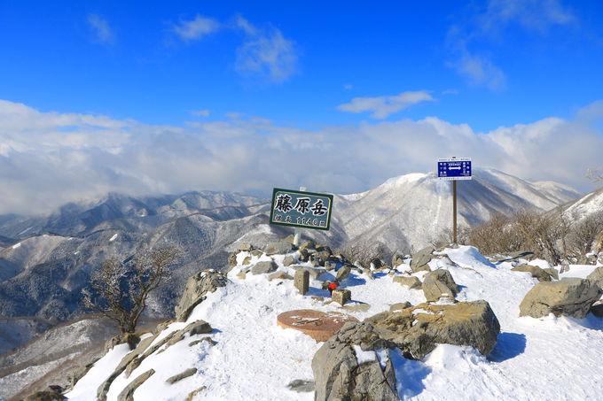 「藤原岳山頂」を目指せ!登り切れば樹氷の花見も