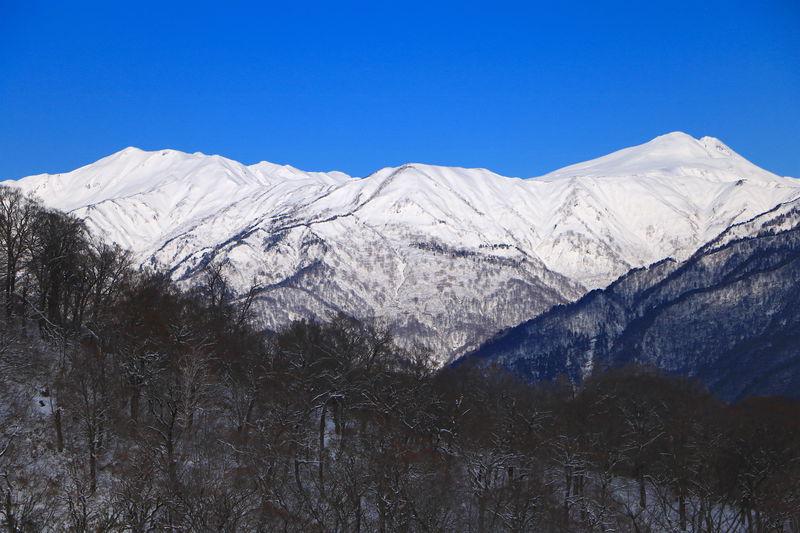 雪山の樹林歩きを満喫し、一つ目の絶景ポイントへ