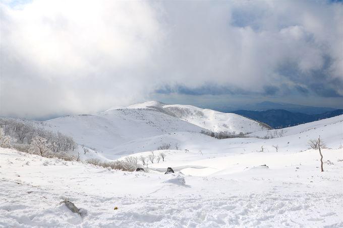 山上に大雪原!?鈴鹿が誇る神秘の「霊仙山」雪山登山