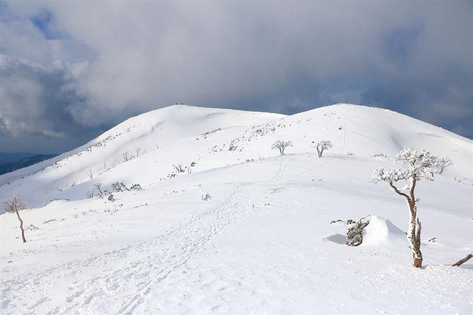 関西屈指の雪稜!「霊仙山」大雪原を越えた先に